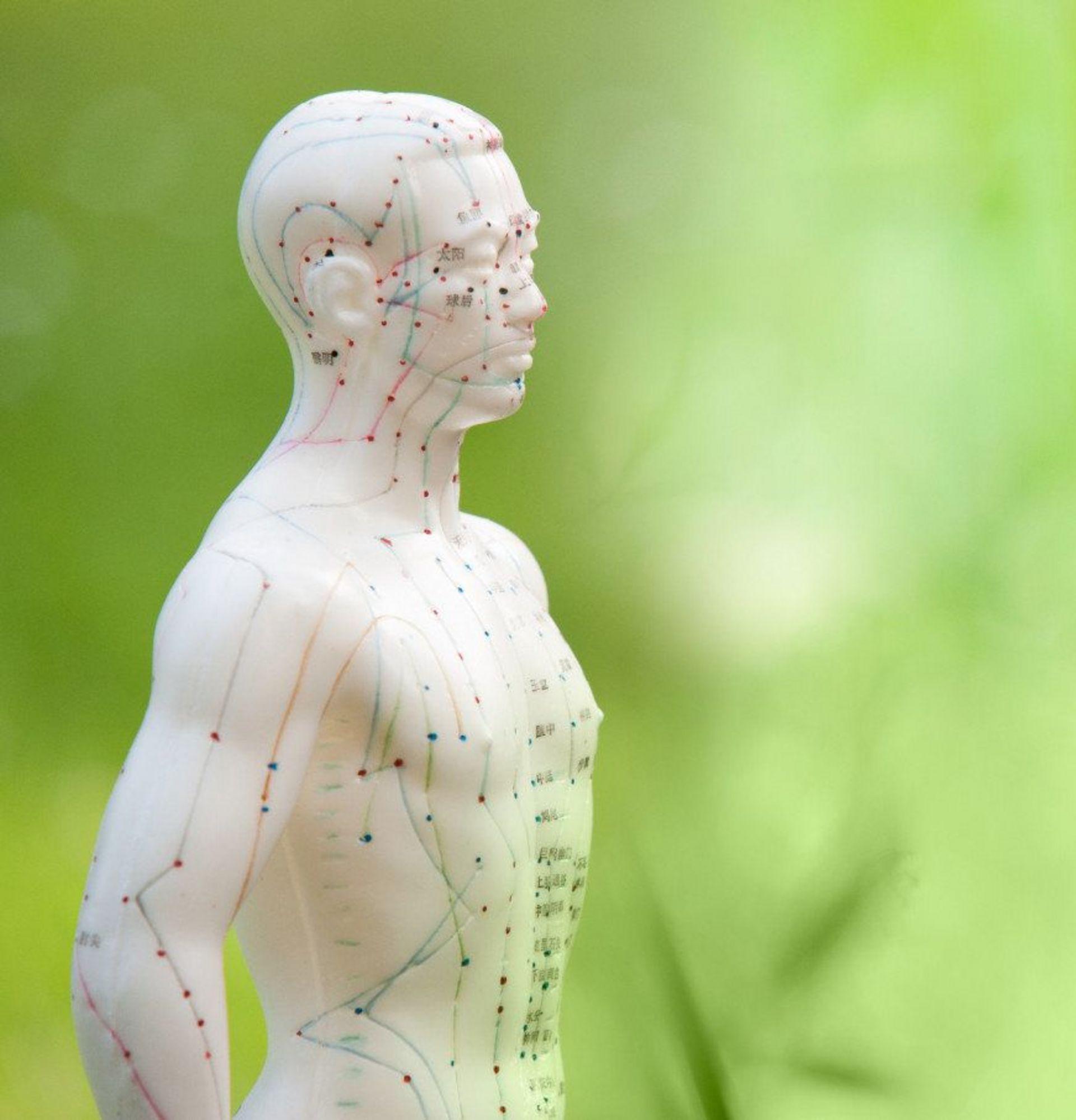 Männliche Figur mit aufgezeichneten Akupunkturpunkten